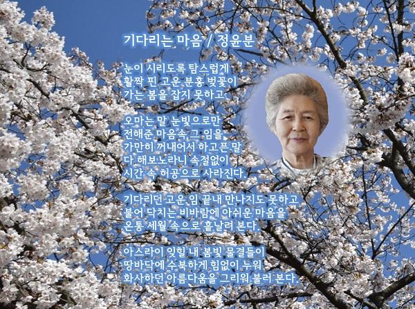 정윤분 시화 액자-서울체1111.jpg